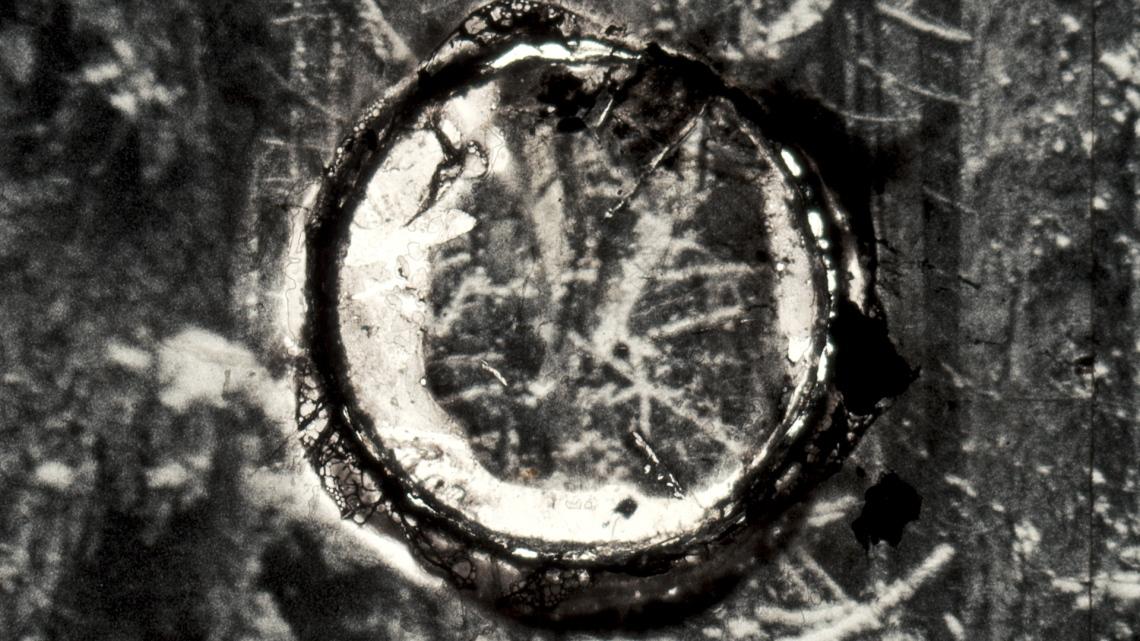 Basilisk, 2019, Autojektor 02